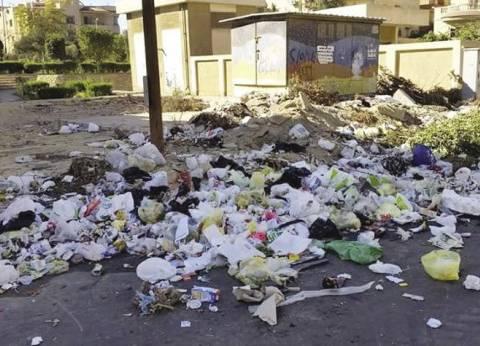 رفع 20 طن مخلفات من مركز ومدينة برج العرب في الإسكندرية