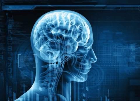 علماء أمريكيون يكشفون: لماذا لا ترتفع درجة حرارة الدماغ؟