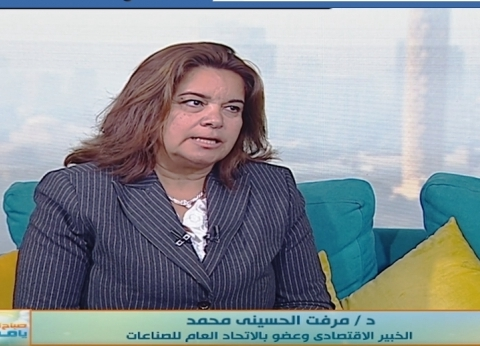 """ميرفت الحسيني: """"البتروكيماويات درع أساسي في الصناعات المختلفة"""""""