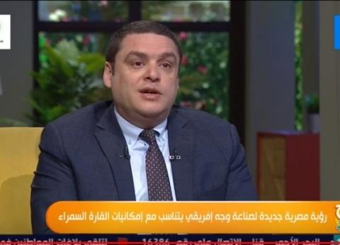 العمدة: الاستثمارت المصرية في الدول الإفريقية 10 مليارات دولار