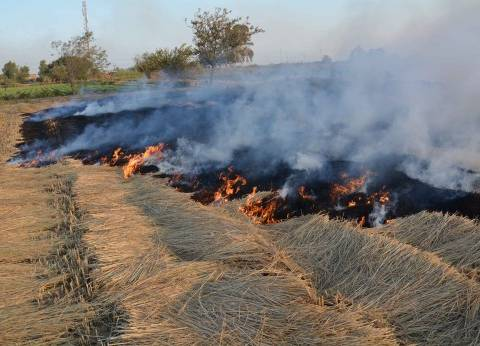 البحيرة: الفلاحون يحرقون القش بعد غلق المحافظة محطات التدوير