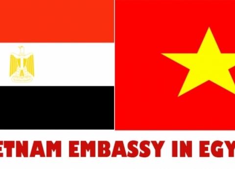 سفارة مصر بفيتنام تفتتح أبوابها ثاني أيام الاستفتاء على تعديل الدستور