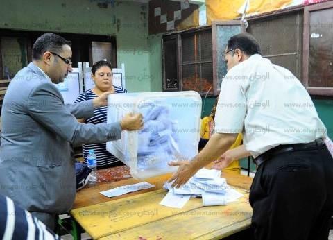"""""""بصيرة"""": نسبة التصويت بالانتخابات 30%.. و""""في حب مصر"""" تصدرت في الصعيد"""