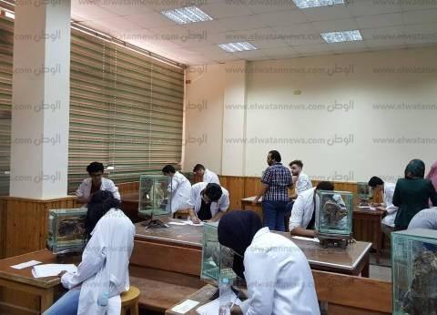 رئيس جامعة المنصورة: إعلان نتائج الامتحانات منتصف يونيو المقبل