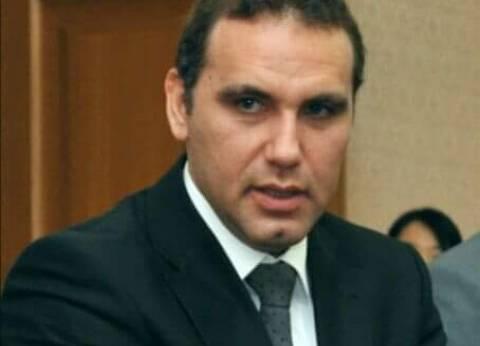 مصر تشارك بوفد قضائي في مؤتمر حماية حقوق الملكية الفكرية بألمانيا