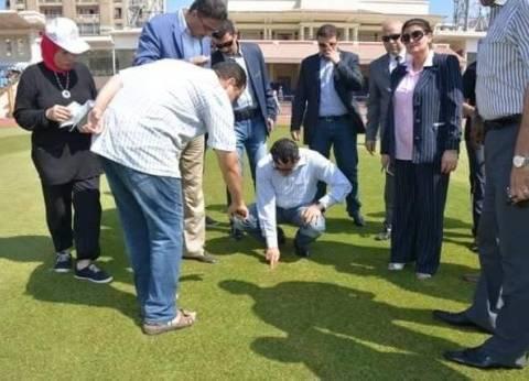 بالصور  وزير الشباب والرياضة يتفقد استاد الإسكندرية الدولي