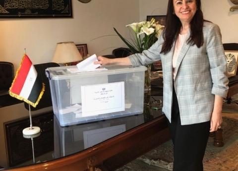 المصريون يصوتون على التعديلات الدستورية في هيوستن وشيكاغو