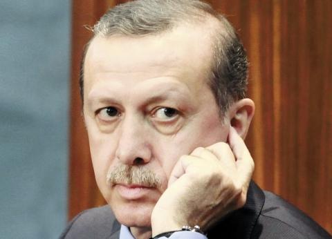أردوغان يرحب بالضربة العسكرية على سوريا