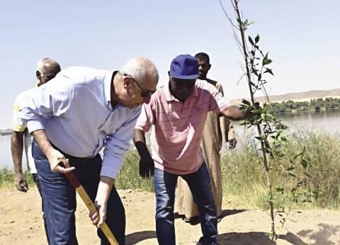 محافظ أسوان يزرع أول شجرة فى طريق كورنيش النيل الجديد