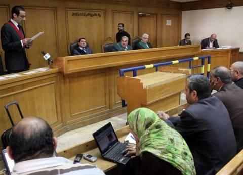 تأجيل معارضة شقيق وزير التنمية المحلية على حكم حبسه 3 سنوات لـ14نوفمبر