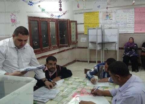 تقدم محمد شعبان شيمكو في لجنة 44 بالسيدة زينب