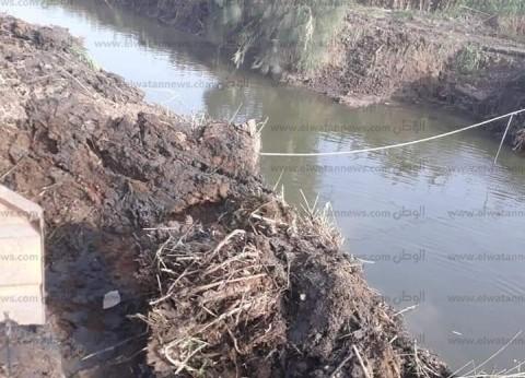 """""""زراعة كفر الشيخ"""": تطهير 69 كيلومترا من المصارف وقنوات الري"""