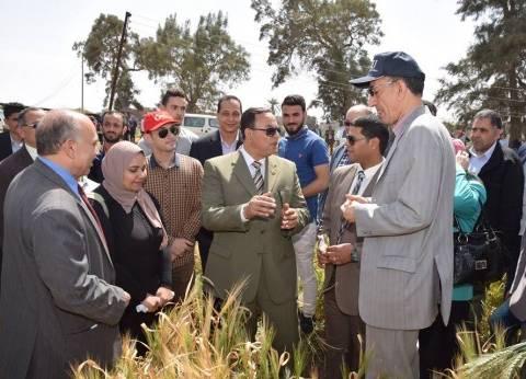 رئيس جامعة المنوفية يشهد مشاريع التخرج في الحقل الإرشادي بمزرعة الراهب