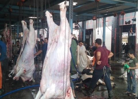 البيطريين تطالب بمنح أعضائها بالمجازر الضبطية القضائية وتغليظ العقوبة