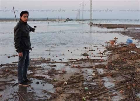 عاجل| الأردن: 7 وفيات في سيول منطقة البحر الميت
