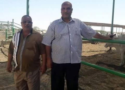 التموين والطب البيطري بالبحر الاحمر يتابعان توافر اللحوم السودانية استعدادا للعيد