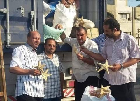 جمارك مطار برج العرب تحبط تهريب 11 عملة أثرية نادرة
