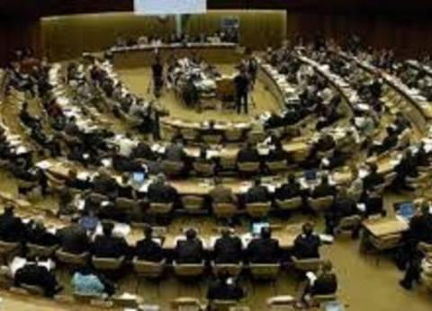 مجلس حقوق الإنسان بجنيف يقر مشروع القرار العربي