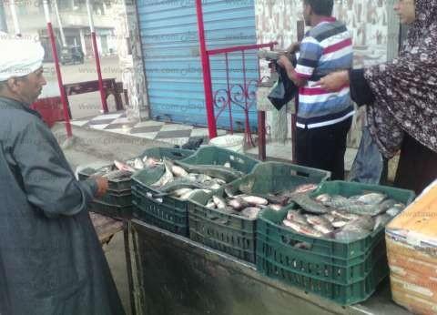 """استقرار أسعار الأسماك في سوق العبور.. و""""الشيلان"""" بـ20 جنيها"""
