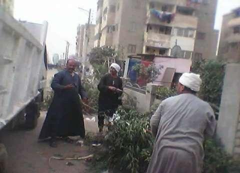 حملة نظافة بشوارع بندر طامية بالفيوم
