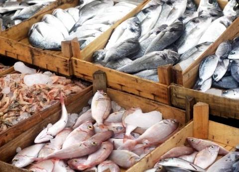 أسعار السمك اليوم الأحد 12-5-2019 في مصر
