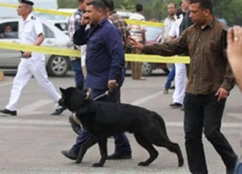 """الشرطة تفتش شوارع العريش بـ""""كلاب بوليسية"""" وترفع السيارات المخالفة"""