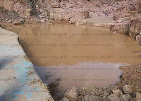 """""""أكساد"""" تطلق مشروعات لتنمية الثروة الحيوانية وحصاد الأمطار في الساحل"""