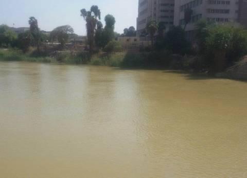 """مسؤول بشركة مياه أسيوط: سنواجه """"عكارة"""" النيل بـ""""الشبة"""" و""""الكلور"""""""
