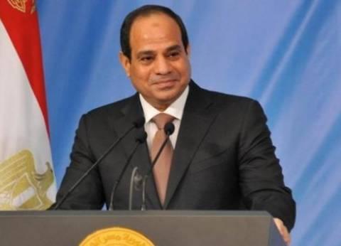 """""""السيسي"""": """"انتخابات البرلمان ستجرى في مناخ آمن.. ولن نترك مصر تسقط"""""""