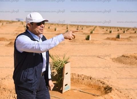 """عمرو أديب يشيد بزيارة السيسي لتوشكى: """"طمنا إن فلوسها مراحتش هباء"""""""
