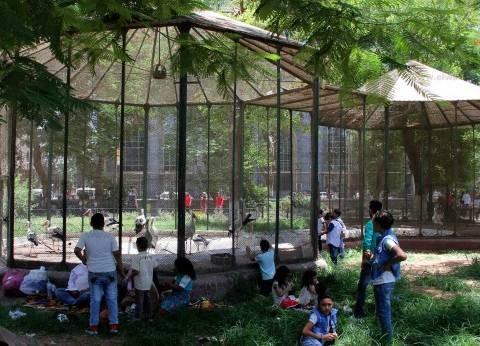 5 جنيهات سعر تذكرة دخول حديقة الحيوان خلال العيد