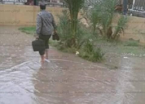 """""""النور"""" بالبحيرة: """"حوش عيسى"""" أصبح خارج الخدمة بعد غرق الطرق"""