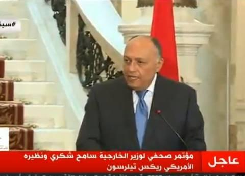 سامح شكري: حقوق الإنسان تحظى بأولوية متقدمة في أجندة الحكومة المصرية