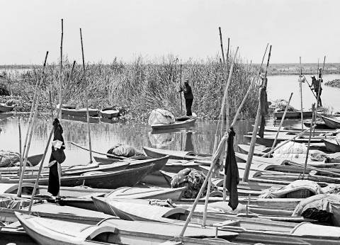 صيادو بحيرة البرلس بكفر الشيخ يحتجون على عدم ضبط لنشات صيد الزريعة