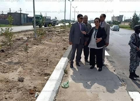 """محافظ البحيرة تتابع حملة """"شوارعنا نظيفة وأشجارها مثمرة"""" في أبوحمص"""