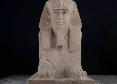 """مدير آثار أسوان عن تمثال """"أبوالهول"""" المكتشف: """"بيبي فيس"""""""