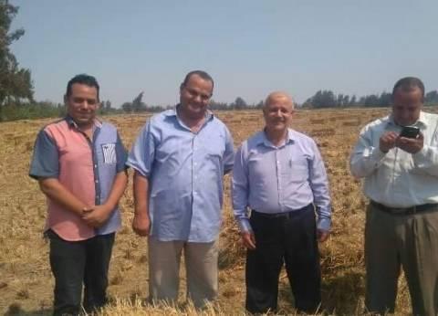 بالصور| وكيل «زراعة الغربية» يتفقد مواقع حصاد الأرز بالمحلة