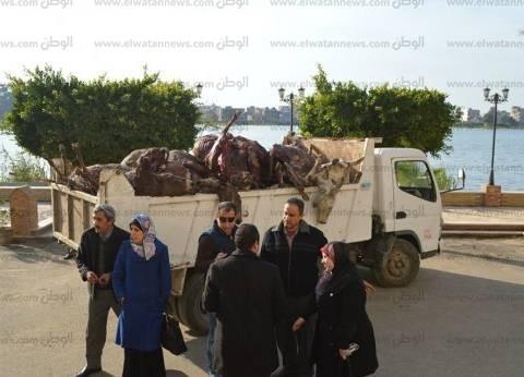 وزير التموين: نشن حملات رقابية لضبط تجار ذبح الحمير