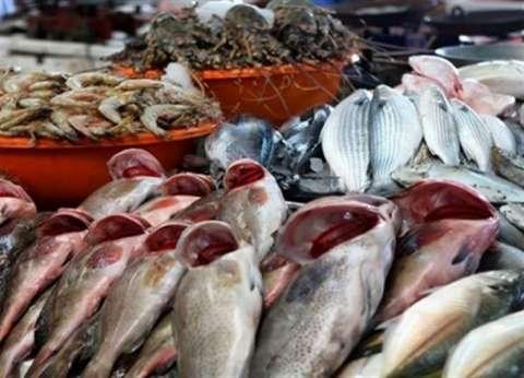 أسعار السمك اليوم الإثنين 22-4-2019 في مصر