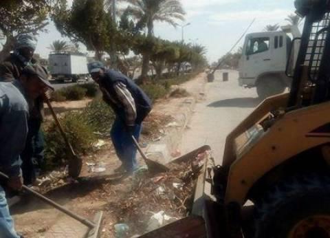بالصور| حملة لرفع المخلفات وتقليم الأشجار بمدينة رأس سدر