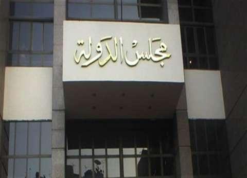 حيثيات رفض القضاء الإداري لاستبعاد «رشوان» من انتخابات الصحفيين