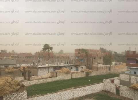 عاصفة ترابية تُسقط النخيل والأشجار وتُغلق طريق قنا الصحراوي