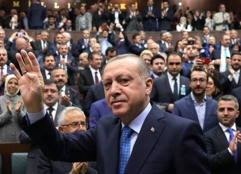 """ميليشيات موالية لتركيا ترفع صور """"أردوغان"""" في سوريا احتفالا بفوزه"""