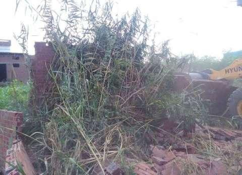مديرية الزراعة تشن حملة لإزالة التعديات على الأراضي الزراعية بدمياط