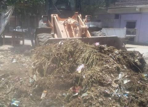 """حملة نظافة مكبرة في """"الناصرية"""" بالمنيا"""