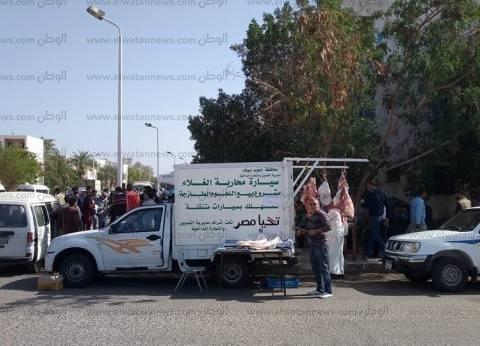 انطلاق سيارات محاربة الغلاء لبيع اللحوم الطازجة بمدينة شرم الشيخ