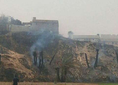 السيطرة على حريق بمزرعة موالح في الشرقية
