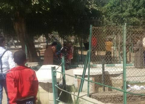 5 آلاف زائر لحديقة حيوان بني سويف خلال احتفالات العيد