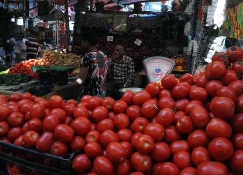 استقرار أسعار البطاطس في سوق العبور.. والطماطم بـ4 جنيهات للكيلوجرام