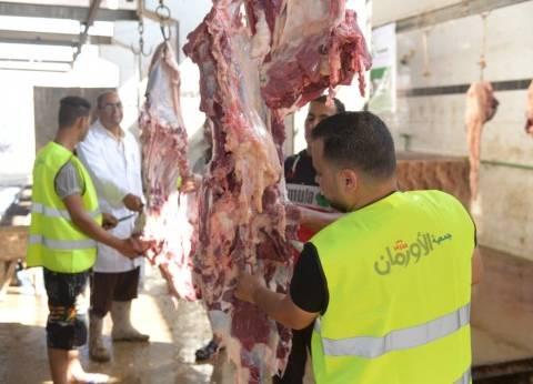 """""""الأورمان"""" تذبح 30 رأس ماشية أضاحي لتوزيعها في المنيا"""